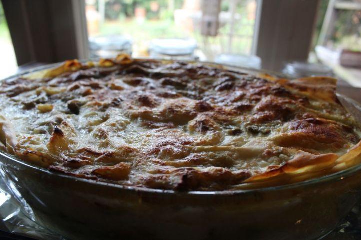 lasagne spinaciotti ok